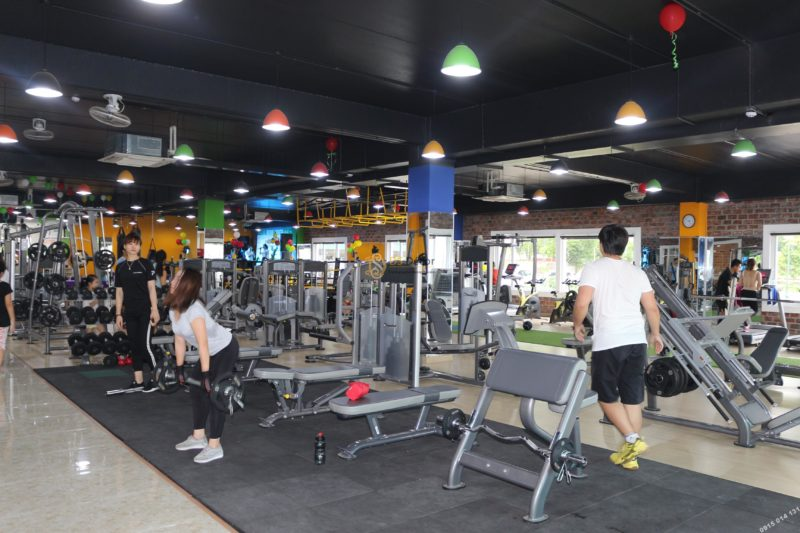 Giấy dán tường giả gạch phòng gym